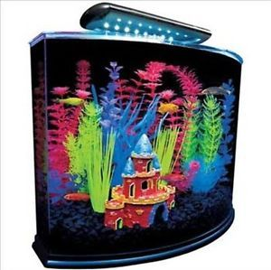 Glofish Aquarium Kit with Blue LED Light 5 Gallon