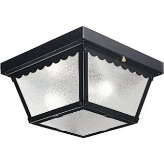 Progress Lighting P5729 Black Functional 2 Light Outdoor Ceiling Fixture from TH
