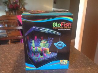 Glofish Aquarium Kit 1 5 Gal Includes Everything for Start