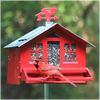 Perky Pet 338 Squirrel Be Gone II Country Style Pesk Resistant Wild Bird Feeder