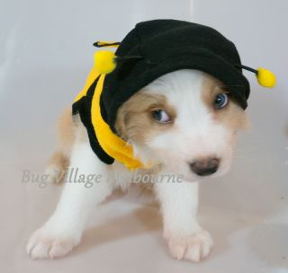 Chihuahua Small Toy Dog Puppy Pet Cat Bee Costume Jacket Clothing XXS to M