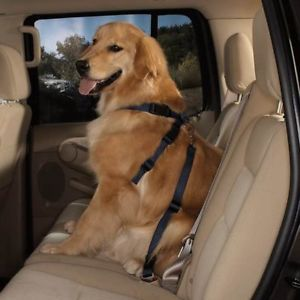 Big Dog Dogs Safety Harness Seat Belt Auto Car XLarge