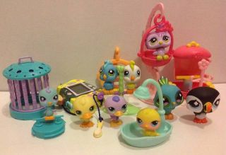 Birds Peacock Littlest Pet Shop LPS Mini Aviary Animals Hasbro Toy Lot E