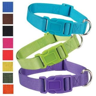 "6 10""x3 8"" Teacup Zack Zoey Nylon Dog Collar 8 Colors"