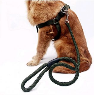 Green Preparation of Nylon Pet Dog Harness and Leash Durable Heavy Duty
