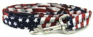 Stars and Stripes Martingale Dog Collar