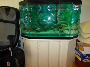Complete Fish Tank Setup Plus Stand Huge 30 Gallon Tank