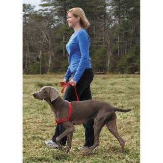 Easy Walk Harness for Dogs 3 Colors 4 Sizes Easy Fit Quick Snap Buckle