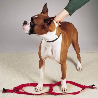 Step in Dog Harness Adjustable Nylon Harnesses Easy to Use Walking Two Steps