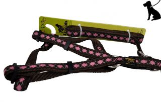 Braided Nylon Dog Leash