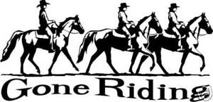 Horse Gone Riding Equestrian Trailer Sign Decal 12""