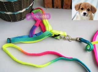 Pet Dog Puppy Colorful Nylon Leash Harness Neck Strap