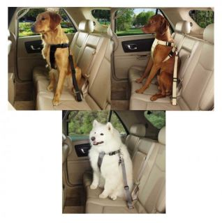 Classic Car Harnesses for Dogs Ride Right Safe Secure Comfortable Dog Harness