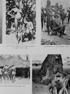 1933 Africa Big Game Hunting Elephant Crocodile Savage Elephant Attack Photos