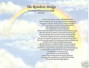 The Rainbow Bridge Poem Pet Memorial Pet Loss Print