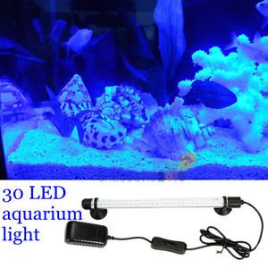 30 Blue LED Lamp Aquarium Light Tube Fish Tank Coral Reef Lighting Waterproof
