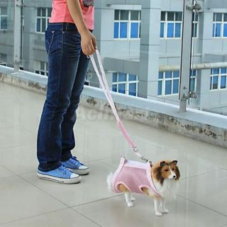 3 in 1 Multi Function Small Pet Dog Cat Coat Clothes Leash Harness Carrier Bag