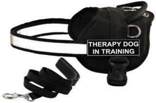 DT Works Working Harness Padded Puppy Bundle w Patch Therapy Dog in Training