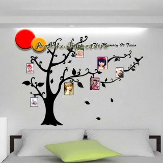 Memory of Tree Birds Photo Frame Large Room Wall Decals Stickers House Decor