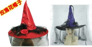 Adult Womens Witch Hat Halloween Costume Accessory
