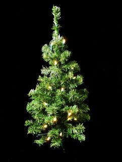 2' Pre Lit LED Lighted Christmas Tree Clear Lights