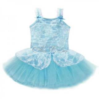 Fairy Girl Ballet Dance Leotard Dress Costume Lace Tutu Skate Dancewear Sz 4 8