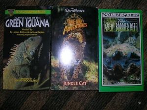 VHS Movie Documentary Animals Green Iguana Jungle Cat Great Barrier Reef