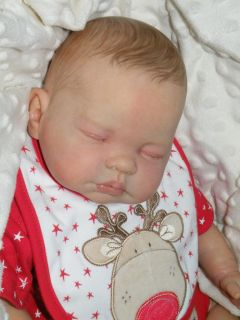 Precious BM Originals Reborn Baby Girl Doll Fake Molly Marie