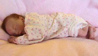 Reborn Newborn Preemie Baby Dalyn from The 'Caleb' Kit by Heather Boneham