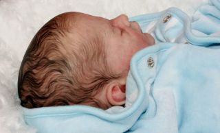 "Beautiful Reborn Newborn Baby Boy Doll ""Bennet"" Sculpted Bykarola Wegerich"