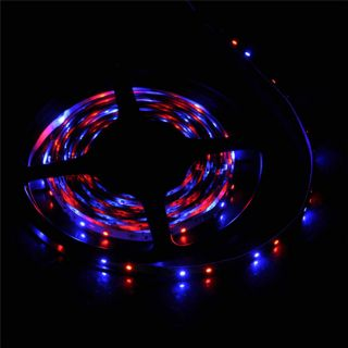 New 5M 3528 SMD RGB Flexible 300 LED Light Strip 60 LED M Remote Power Supply