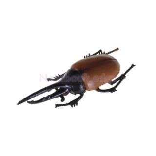 5X Kids Science Nature Education Hercules Beetle Toy Insect Animal Home Decor