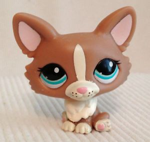 Littlest Pet Shop LPS Welsh Corgi Dog 1864 Chihuahua Mocha Tan Puppy