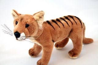 "Tasmanian Tiger Thylacine Soft Toy Stuffed Animal Plush Toy 9"" 'Sammy' New"