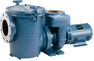 Sta rite Commercial Self priming Pool Pump 10 Hp, 3 Ph with Strainer Patio, Lawn & Garden