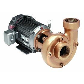 "AMT 3151 95 2x1.5"" Cast Iron Heavy Duty Straight Centrifugal Pump, Buna N Seal, 3hp 182JM, 3 Phase"