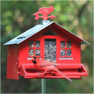 Perky Pet Squirrel Be Gone Country Style Bird Feeder   Bird Feeders