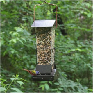 Top Flight Fortress Squirrel Proof Bird Feeder   Bird Feeders