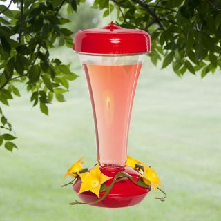 Aster Hummingbird Feeder   Bird Feeders