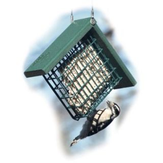 Going Green Recycled Plastic Suet Bird Feeder   Bird Feeders