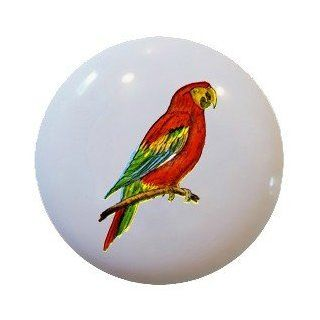 Tropical Parrot Macaw Ceramic Knobs Pulls Kitchen Drawer Cabinet Vanity 356   Cabinet And Furniture Knobs