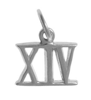 "Roman Numeral Pendant for All Occasions; Anniversary, Birthdays,Milestones, #407.14, 9/16"" Tall w/Loop, Ster., #XIV Jewelry"